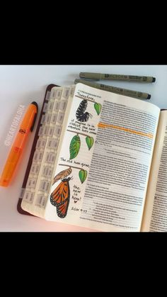 Bible Journaling Ideas - Romans 12:2