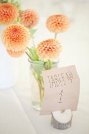 centerpieces- simple and cute