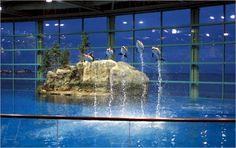 1000 images about random places i 39 ve been on pinterest for Aquarium washington dc