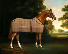Equidae Gallery in Saratoga New York Exhibiting Artist Jaime Corum Equine Oil…