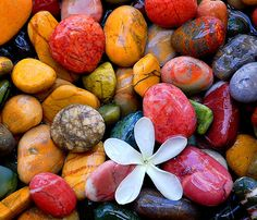 Pebbles in the Stream    BBMaui. These little colorful pebbles are actually from the Aegean Sea. Explosion of Color - love it!