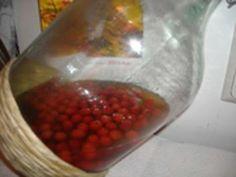 Hagebutten - Likör - Rezept Pink Grapefruit, Wine Decanter, Margarita, Allrecipes, Food And Drink, Cocktails, Liqueurs, Internet, Party