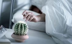 10 советов для тех, кому трудно вставать по звонку будильника