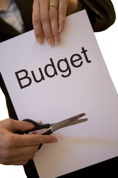 Software project budget