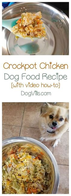 Looking for a homemade dog food recipe that doesn't take a ton of time to whip up? Try this crockpot chicken!