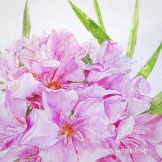 Drawings, Illustration, Plants, Painting, Painting Art, Sketches, Paintings, Illustrations, Plant