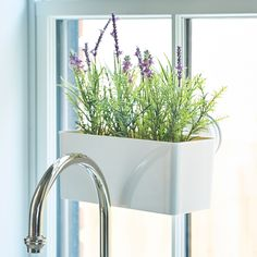 If you have limited counter space, but you want to grow your herbs indoors, use this Suction Cup Window Planter that securely attaches to your window. Great for small spaces or apartments!