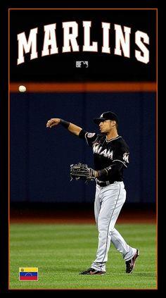 Baseball Photos, Miami Marlins, Mlb, Basketball Court, Sports, Hs Sports, Baseball Pictures, Sport