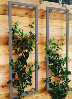 Wall Trellis, Garden Trellis, Garden Beds, Plant Trellis, Vine Trellis, Garden Walls, Trellis Fence, Garden Fence Art, Side Garden
