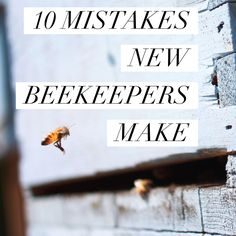 10 MISTAKES NEW BEEKEEPERS MAKE :http://beekeepinglikeagirl.com/10-mistakes-new-beekeepers-make/