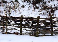 Hazelnut Grove: How to build a traditional twig fence