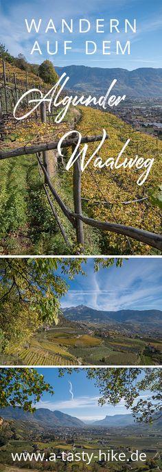 Entspannte Wanderung auf dem Algunder Waalweg! Vor allem im Frühjahr und Herbst ist das Wandern auf dem Algunder Waalweg in Südtirol super schön! Eine perfekte Wanderung für Wanderanfänger und Genusswanderer #Wandern #Wanderung #Südtirol