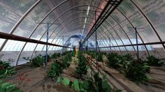 mars greenhouse  Good article on terraforming Mars, Luna, Venus, and free space stations for the first extraterrestrial colonies. A+