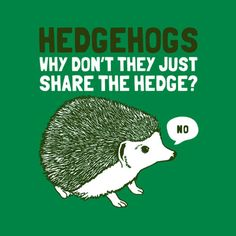 Awesome, my daughter will love this..she has a pet hedgehog :)