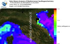 #meteo #forecast #fishing #pesca #mediterranean #mediterraneo #sea #mare 15/12/2013 #north #nord #Italy #Italia #Venezia #Toscana #Firenze