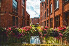 Natura i industrialne otoczenie? Para doskonała! - Inspirowani Naturą Flower Boxes, Flowers, Cities, Urban, Stop It, Window Boxes, Planter Boxes, Royal Icing Flowers, Flower