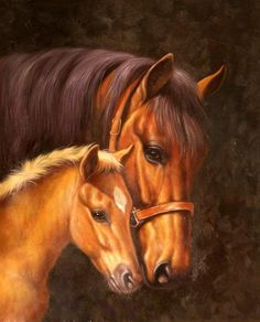 Бруно Тина. Рядом Horse Photos, Horse Pictures, God Pictures, Pictures To Paint, Beautiful Horses, Animals Beautiful, Acrylic Painting Canvas, Canvas Art, Horse Artwork