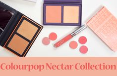 colourpop nectar collection review swatches spring 2017 Colourpop Eyeshadow Swatches, First Day Of Spring, Spring Makeup, Have Some Fun, Dupes, Madness, Blog, Beauty, Collection