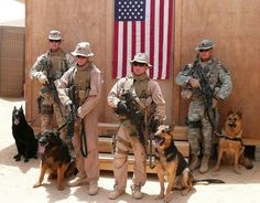 I love this picture of Military hero dogs! Military Working Dogs, Military Dogs, Police Dogs, Military Service, Animal Heros, Dog Soldiers, My Champion, War Dogs, Service Dogs