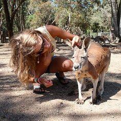 #throwbackto2009  #tb #throwback #memories #kangaroo #australia #australien #cute #currumbin #currumbinwildlifesanctuary #goldcoast #kenguru by tozsitri http://ift.tt/1X9mXhV