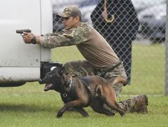 The surprising reason more police dogs are dying in the line of duty via @washingtonpost #dogs #policedogs