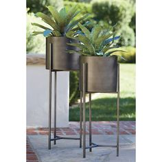Dundee Short Plant Stand - Crate and Barrel Short Plants, Tall Plants, Large Plants, Modern Planters, Outdoor Planters, Planter Pots, Indoor Plant Shelves, Indoor Plant Pots, Indoor Garden
