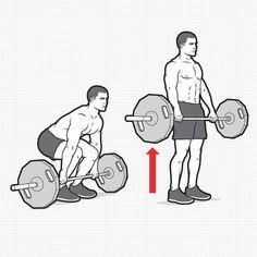 Back Workout Men, Major Muscles, Bench Press, Muscle Groups, Beachbody, Mens Fitness, Bodybuilding, Summer Beach, Image