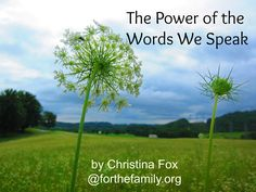 How do your words make your children feel? Do they catch your heart for them or feel like a burden? Words shape us and breathe life into others, or slowly crush. Here's how to start using yours as a blessing over your family.