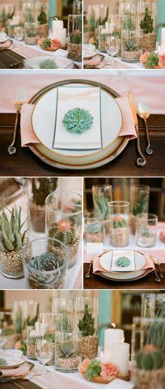 Succulent centerpiece ideas. Love.