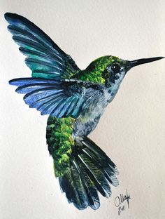 hummingbird drawings | Humming Bird Watercolor by Tyleen