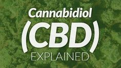 Cannabidiol (CBD): Fighting Inflammation & Aggressive Forms of Cancer