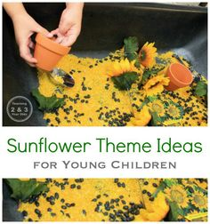 Preschool Sensory Bin with Sunflowers