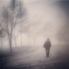 mustafaseven -instagram