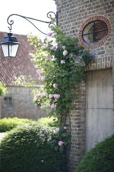 Climbing roses against naked brick looks so beautiful - love the light and small round window too