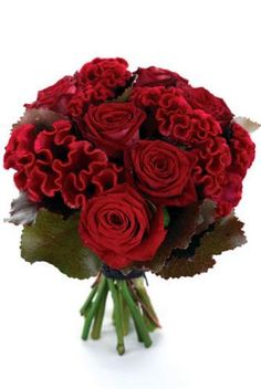 Red bouquet for me