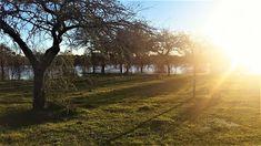 Photofusionvirtual: Atardecer en el rio y el campo Uruguay
