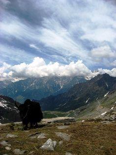 Yak skies, Himalayas 2008