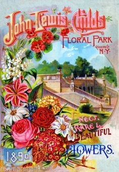 1890 Childs Park Vintage Flowers Seed Packet Catalogue Advertisement Poster | eBay