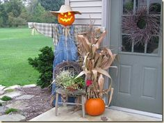 Cool scarecrow!