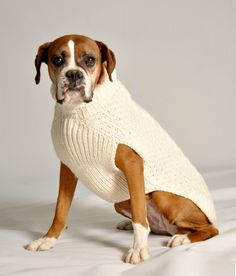 Hand Knit Artisan Sweaters for your Pooch! :)
