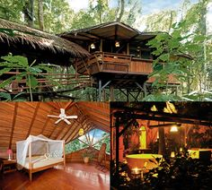 Tree Lodge, Punta Uva, Costa Rica