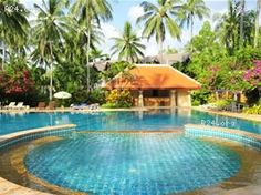 Phuket is ideal for Christmas and New Year holiday vacation plenty of hotels and beach resorts, http://www.beachsiam.com/phuket.html lots of hotel and resort photos and tips