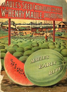 Maule's Seed Catalogue,1889. via @Smithsonian Institution Libraries