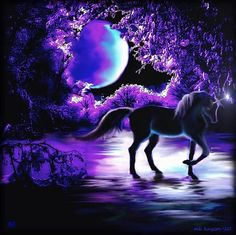 Unicorn in the purple of the night