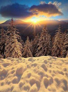 Winter Szenen, I Love Winter, Winter Magic, Winter Sunset, Winter Light, Winter Months, Foto Picture, All Nature, Snow Scenes