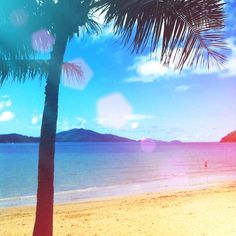Hamilton island. Queensland Hamilton Island, Aussies, Great Barrier Reef, Summer Of Love, Good Times, Places To See, New Zealand, Sailing, Paradise