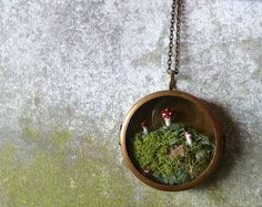 Terrarium Moss Miniature Mushroom Woodland Locket Necklace.. The Phineas Alazar Grubb Saga Continues.