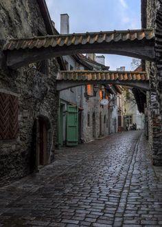 タリン(Tallinn)の石畳の通り- エストニア