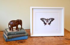 Butterfly print / picture. monochrome art. Art print of a striking Swallowtail butterfly taken from my original watercolour drawing. Present idea for girls. Nursery art. Black and white art.