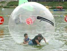 Toys & Hobbies The Best Free Air Ship To Door Inflatable Bouncers Clear Inflatable Water Walking Ball Zorb Ball Big Inflatable Human Walking Balloon With Profession Zipper